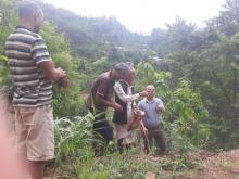 हरियाली पूर्वखोला गाउँपालिकाको तयारी